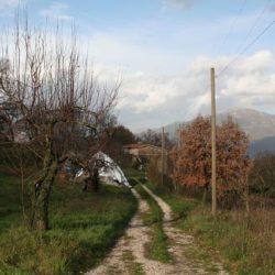 Masseria Monaci - Conca della Campania