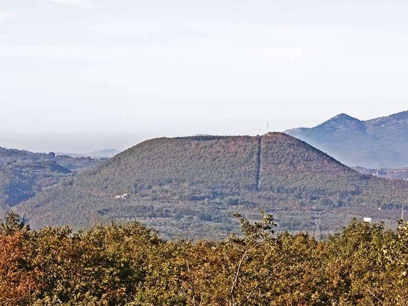 Monte Friello