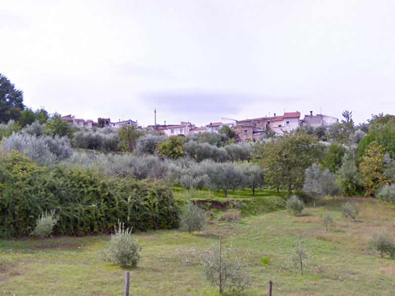 Vallecardi