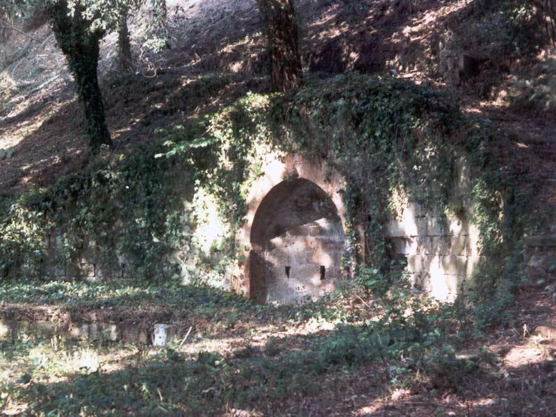 Lo stato di degrado del Parco Pineta, particolare della fontana