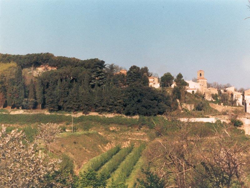 Parco Pineta Galdieri Bartoli